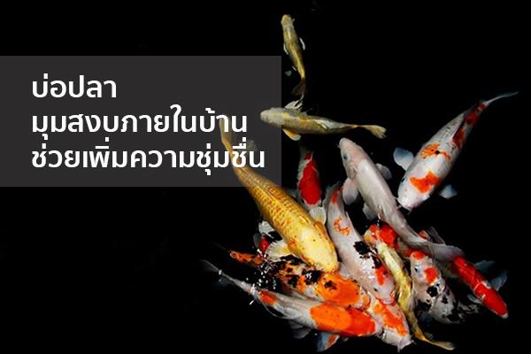 บ่อปลา มุมสงบภายในบ้านช่วยเพิ่มความชุ่มชื่น Trendy Home แต่งบ้าน ปรับคอนโด
